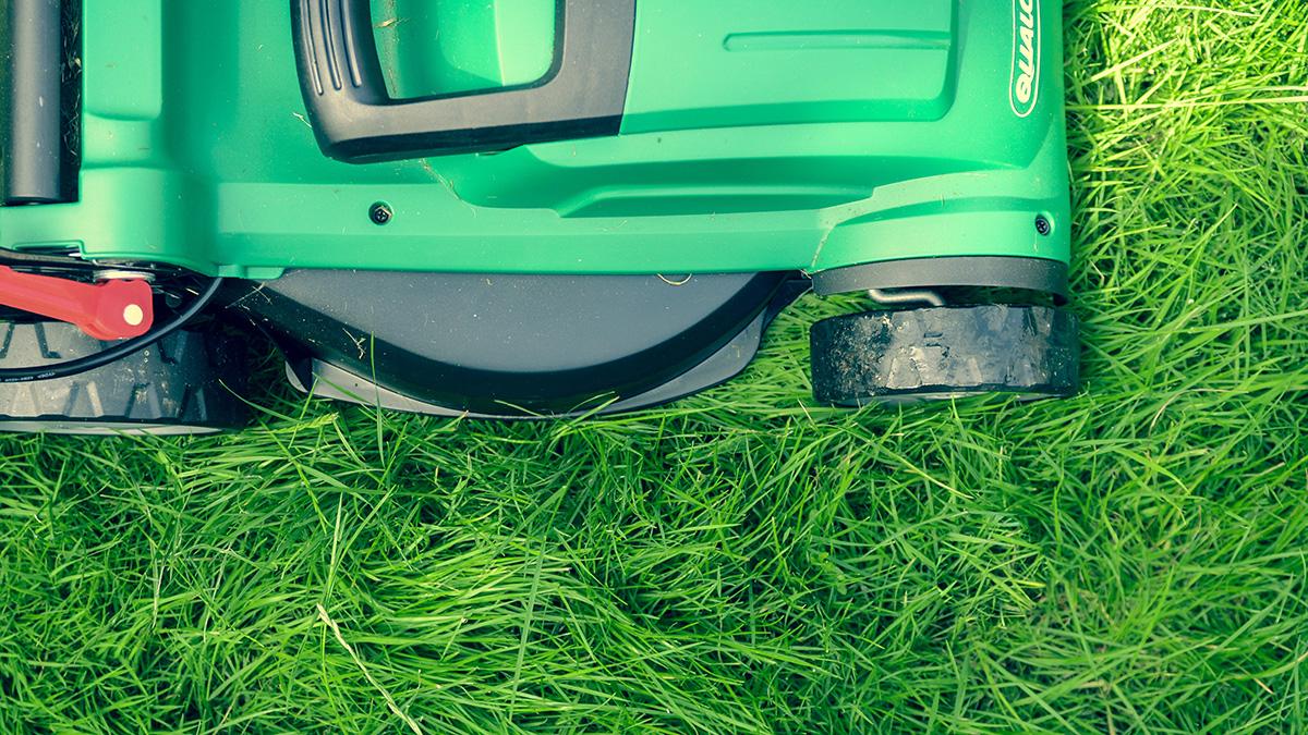 CHIP testet Mähroboter für den smarten Garten